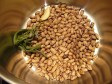 cottura dei legumi secchi